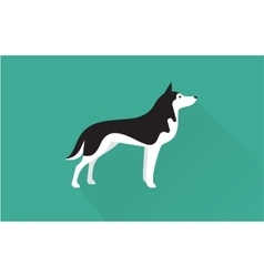 siberian husky icon vector image vector image