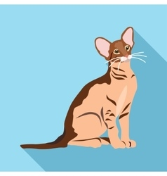 Cats of different breeds with long shadow vector