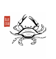 Blue crab black and white vector