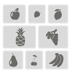 Set of monochrome icons with fruits vector