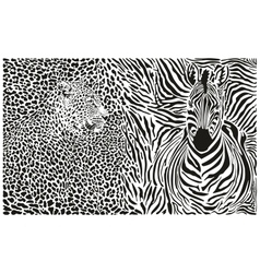 Background with leopard and zebra vector image