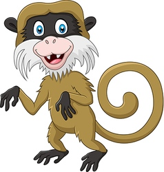 Cartoon funny tamarin monkey isolated vector image