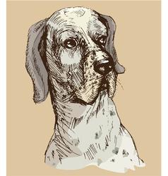 Dalmatian head - hand drawn -sketch in vintage sty vector image