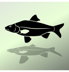 Fish icon food symbol cyprinidae family fresh vector