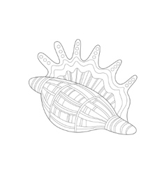 Lambis Snail Shell Sea Underwater Nature Adult vector image