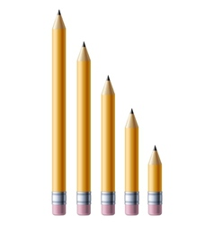 Yellow pencils vector image vector image
