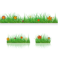 set green grass borders with colorful flowers vector image