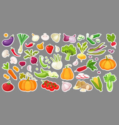 big set of colorful vegetables isolated stickers vector image vector image