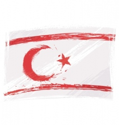 grunge northern Cyprus flag vector image vector image