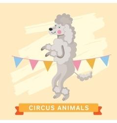 Circus dog animal series vector