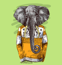 Elephant in knitted sweater vector