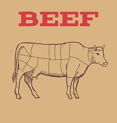 Scheme of beef cuts vector