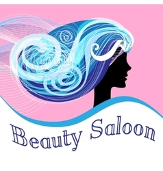 Woman beauty salon vector