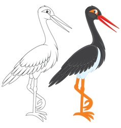 Black stork vector