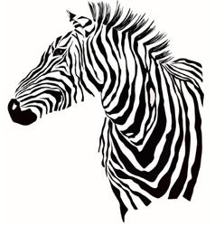 Animal of zebra silhouette vector image