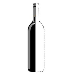bottle sketch vector image