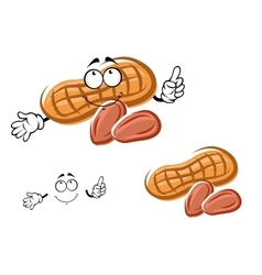 Cartoon orange peanut and nuts vector