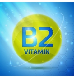 Vitamin b2 icon vector