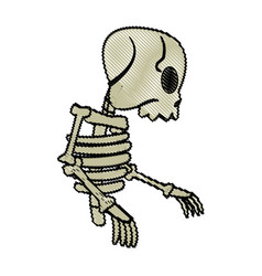 Cartoon skeleton bones mystery fairy tale vector