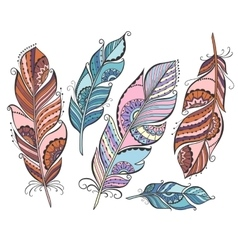 Set of ethnic colored feathers vector