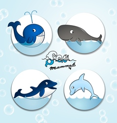 Animals sea mammals vector