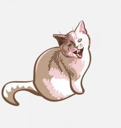 Cat meows vector