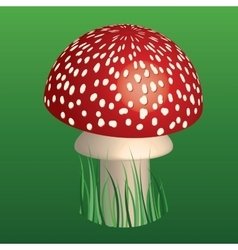 Fly-agaric vector