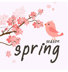 spring season bird sakura background image vector image