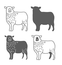 Domestic animal sheep vector
