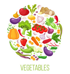 banner round composition with colorful vegetables vector image