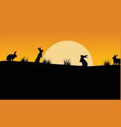 silhouette of bunny with orange sky landscape vector image vector image