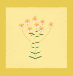 flat shading style icon wild plant hypericum vector image