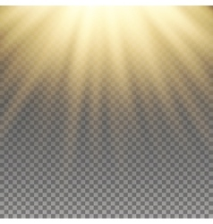 Yellow warm light effect vector