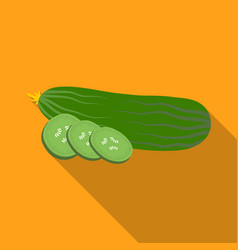 cucumber sliced into piecesburgers and vector image