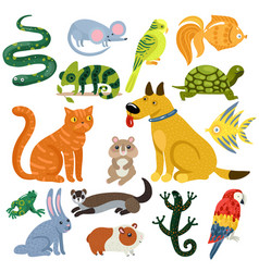 pets colorful icons set vector image vector image