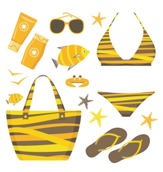 Fashionable set with a swimming suit vector image