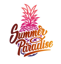 Summer paradise hand drawn lettering phrase vector