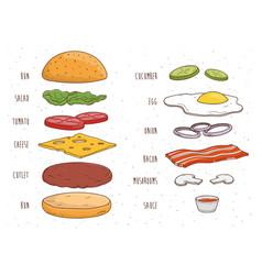 Hamburger ingredients separately bun salad vector
