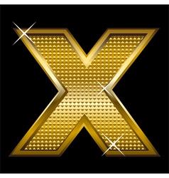 Golden font type letter x vector