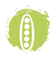 Bean fresh vegetable isolated icon vector