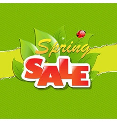 Green torn paper borders and spring sale banner vector