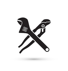 pliers isolated vector image