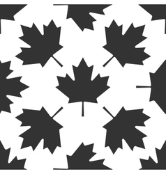 Canadian Maple Leaf icon pattern on white vector image