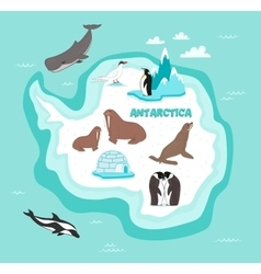 Antarctic continent map with wildlife animals vector