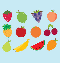 fruity fruits vector image