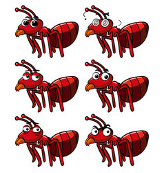 Red ant with different facial expressions vector