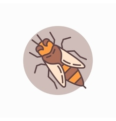 Honey bee flat icon vector