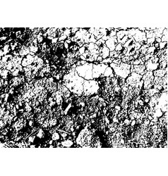 stones background black and white texture vector image vector image