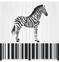 zebra barcode vector image