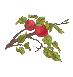 Hand drawing an apple branch vector